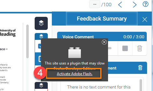 "click on the ""Activate Adobe Flash"" link in the popup"