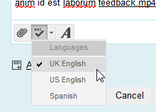 Feedback to learner Language options