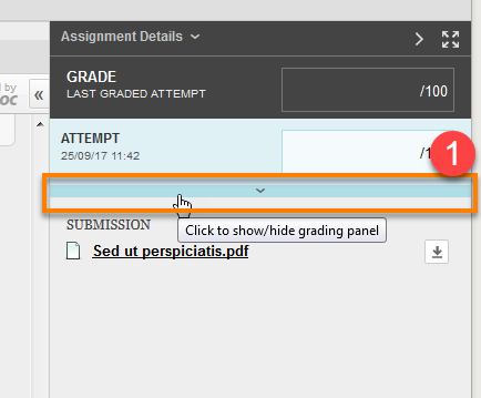 Blackboard Assignment Grading panel, expand options