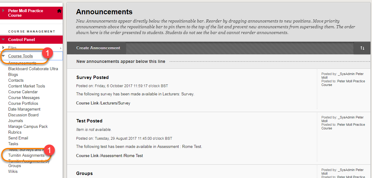 Control Panel showing course tools and Turnitin Assignments