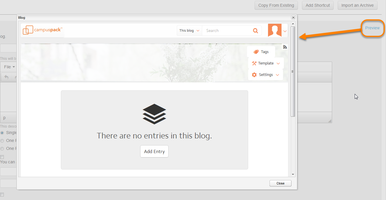 Clicking the preview button and the preview window of the empty blog opening.