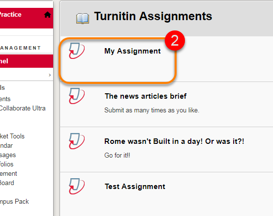 Showing the list of Turnitin assignments