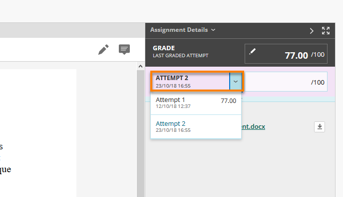 Assignment - view attempts drop down menu  in grading area