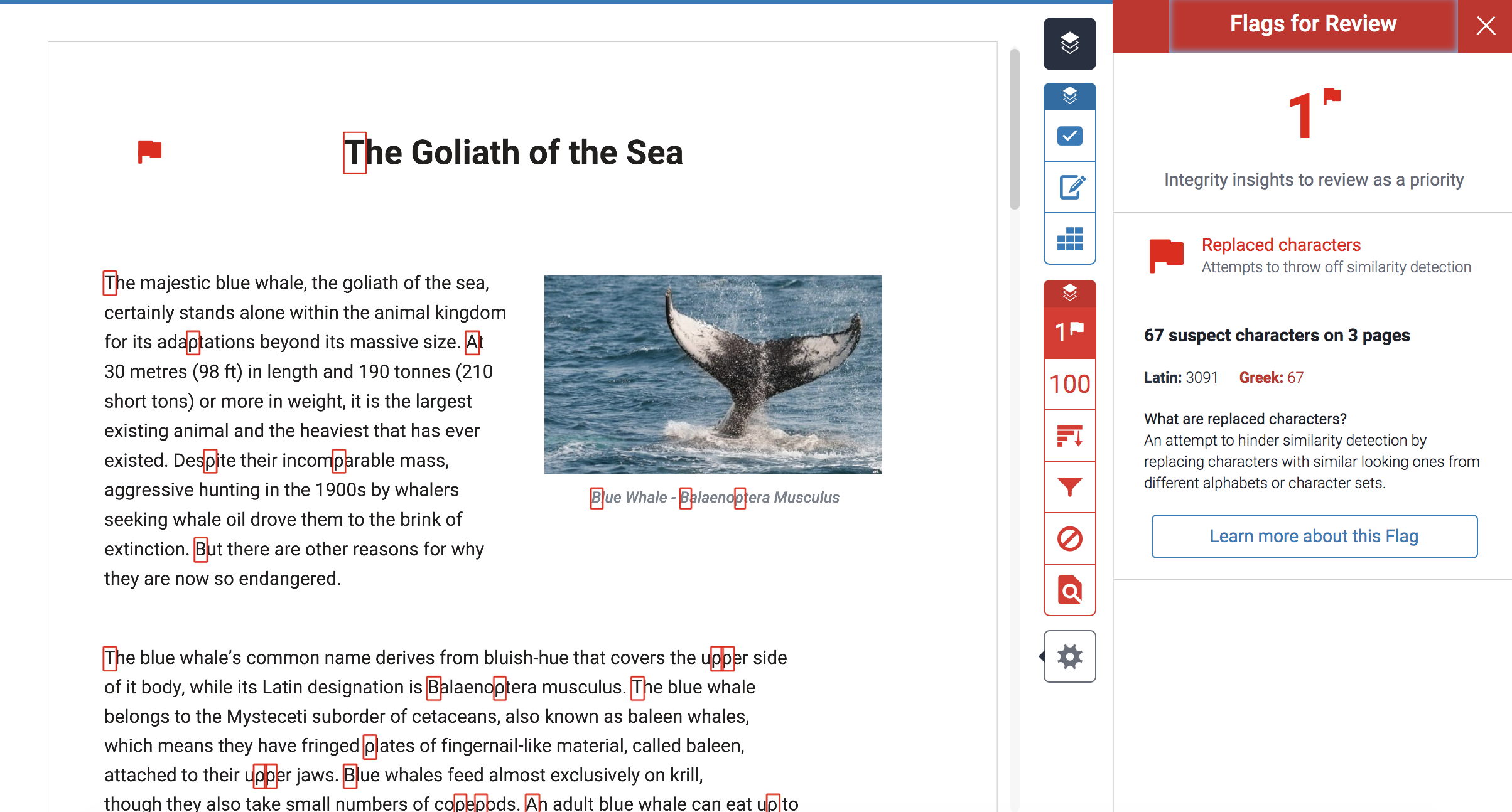 An example assignment in the turnitin feedback studio showing the flag feature and highlighted changed text